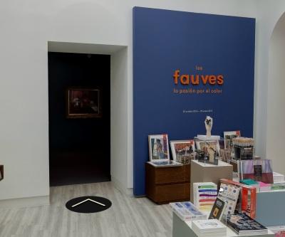 Entrada Visita virtual El Fauvismo Fundacion Mapfre